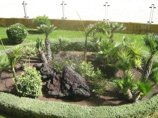 Gran Hotel Atlantis Bahia Real: Hotel grounds