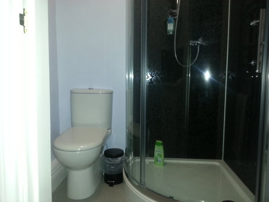 Acer Lodge Bed & Breakfast: En suite for downstairs room