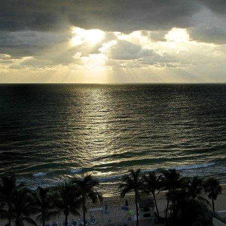 Ocean sky forex reviews