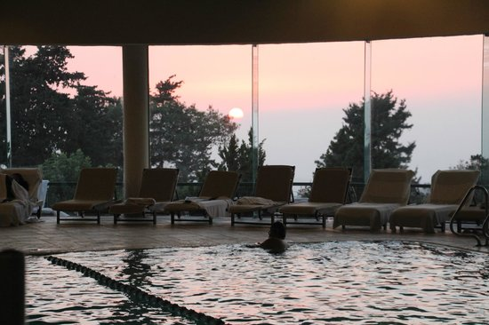 Carmel Forest Spa Resort by Isrotel Exclusive Collection: Indoor swimming pool