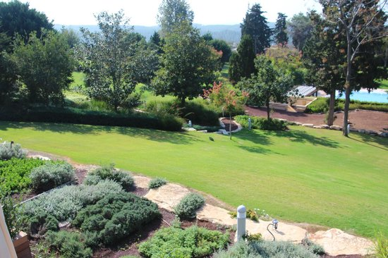 Carmel Forest Spa Resort by Isrotel Exclusive Collection: Garden1