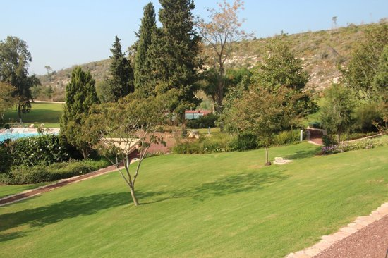 Carmel Forest Spa Resort by Isrotel Exclusive Collection: Garden 5