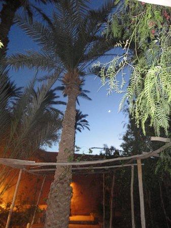 Villa Zagora Ma Villa au Sahara: Trés belle nuit  a Villa zagora