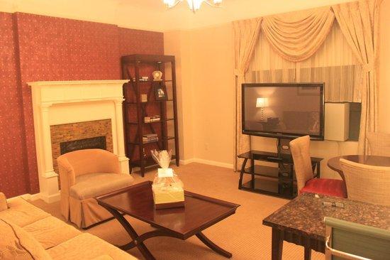 Hotel Metro : tv in living room