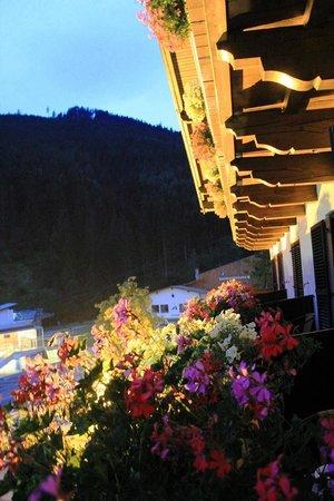 Pension Margarete Hotel Garni: إطلالة الغرفه