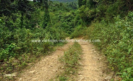 Vietnam Motorbike Tour - Day Trips: Vietnam Motorbike Tours