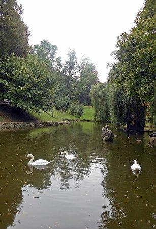 Stryisky Park