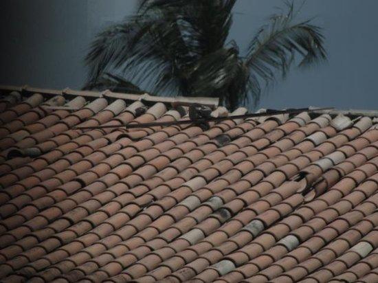 Hotel Beach Hills : telhado quebrado...gerando as infiltrações