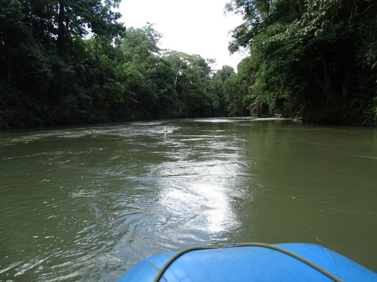 Costa Rica Wonderland Tours: Penas Blancas float trip
