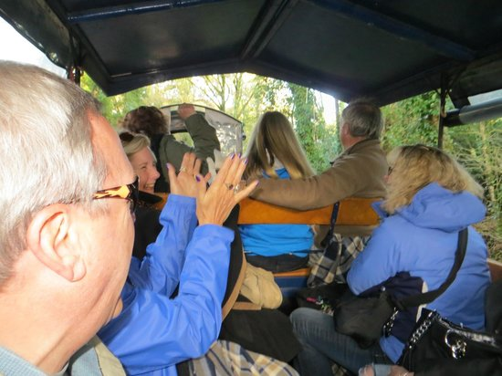 Killarney Jaunting Cars Tours: Wonderful group