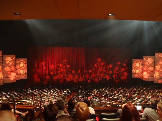 Celine Dion at the Colosseum at Caesars Palace : The show
