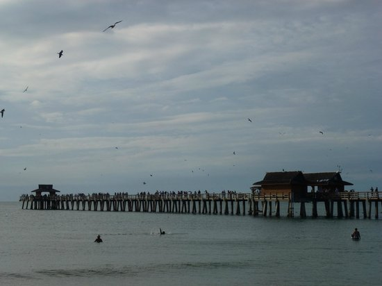 Lemon Tree Inn: Naples Pier