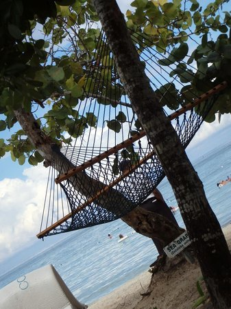 Couples Negril : Hammock on the beach