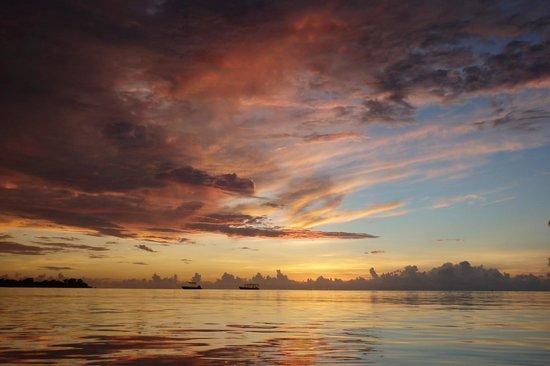 Couples Negril : Amazing sunsets