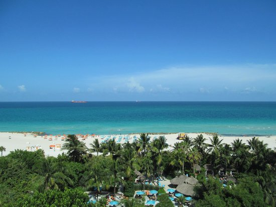 The Palms Hotel & Spa: Amazing View.