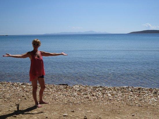 Anna Platanou Hotel & Suites: beach