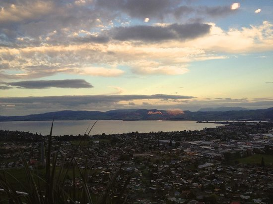 Funky Green Voyager : View from the Rotorua gondola