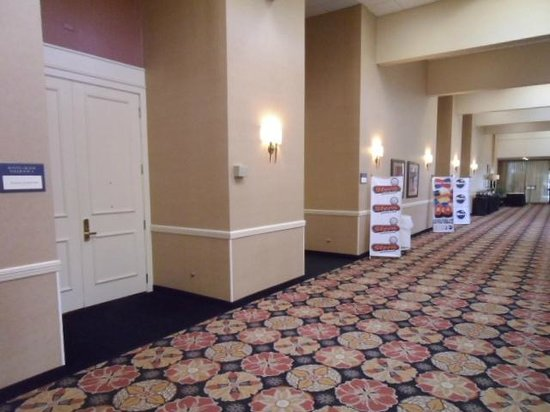 Crowne Plaza Houston - Brookhollow: Ballroom doors A-C