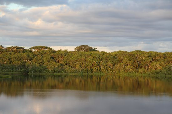 Napo Wildlife Center Ecolodge: Sicht aus der Lodge auf den See
