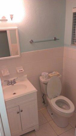 Galt Villas Inn: baño2