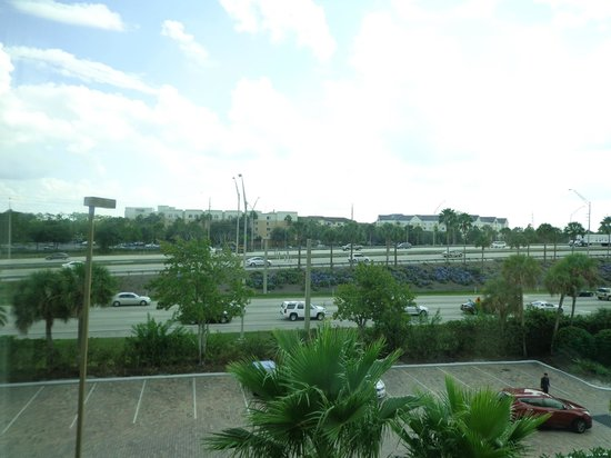 Radisson Hotel Orlando - Lake Buena Vista: vista
