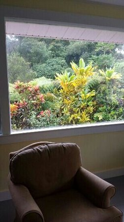 Akiko's Buddhist Bed and Breakfast : looking out the living room window