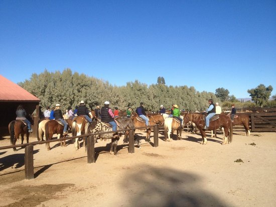 Rancho de los Caballeros: Horseback Ride Ready to Go
