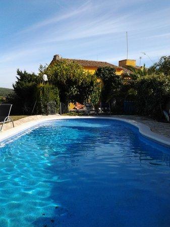 Arianel.la: swimming pol