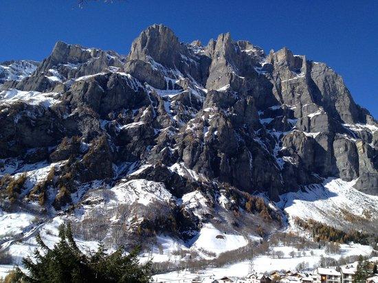 Hotel Les Sources des Alpes: Vue depuis hôtel