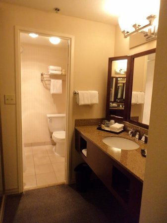 Sheraton Park Hotel at the Anaheim Resort : Carpeted sink area.