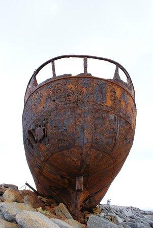 Plassey Wreck: Pleassey