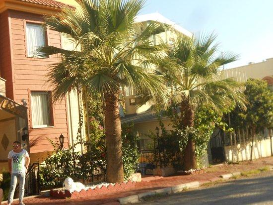 Astoria Hotel : Отель