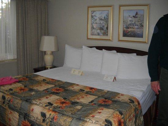 Royal Scot Hotel & Suites: Big King Bed!