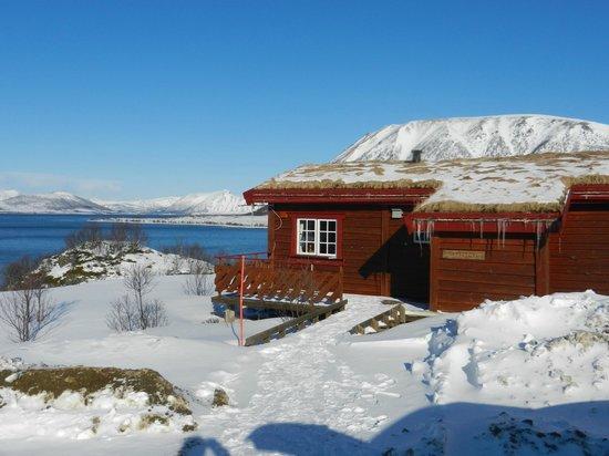 Andøy Friluftssenter: -