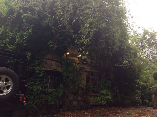 Wizards Thatch at Alderley Edge: From the outside