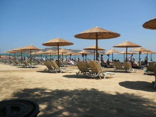 Amalthia Beach Resort: from the beach