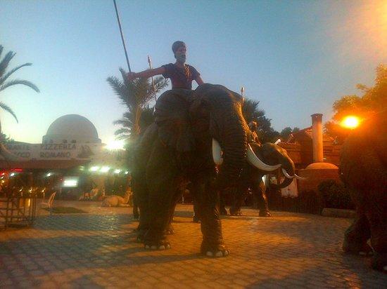 Yasmin Hammamet: outside entrance to Carthageland