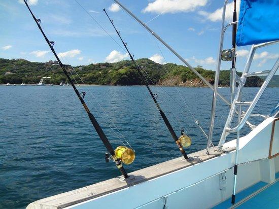 El jefe boat bedroom photo de papagayo fishing charters for Delaware fishing charters