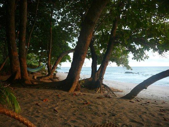Latitude 10 Beachfront Resort : Just another amazing beach.  No big deal.