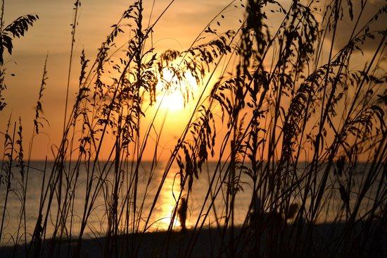 Beachview Cottages: Sunset from Beachview