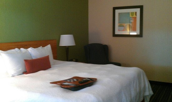 Hampton Inn Brooksville / Dade City: Bedroom