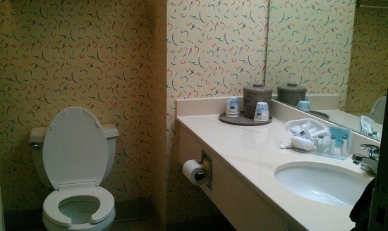 Hampton Inn Brooksville / Dade City: Bathroom