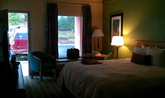 Hampton Inn Brooksville / Dade City : Bedroom