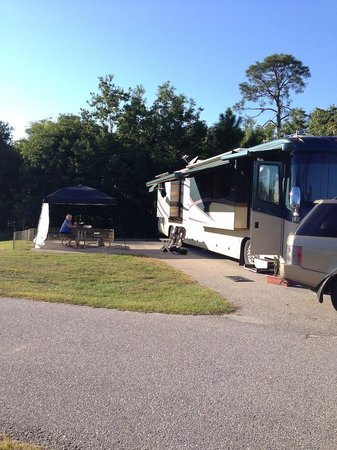 Gulf State Park Campground : Spacious, level, paved sites