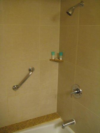 Hyatt Regency Denver Tech Center: Shower (you think?).