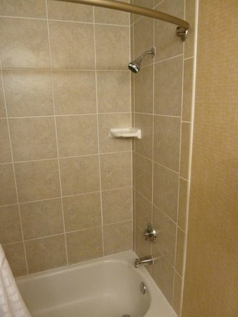 Comfort Inn Martinsville : Shower - could be updated but OK