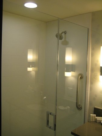 SpringHill Suites Denver Downtown : Bathroom - Beautiful glass shower.