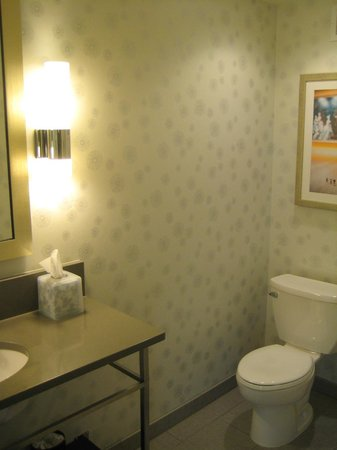 SpringHill Suites Denver Downtown : Bathroom