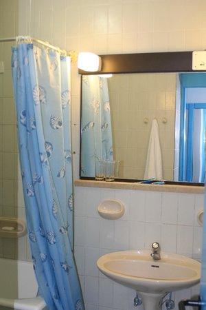 Hotel Slovenska Plaza: Ванная