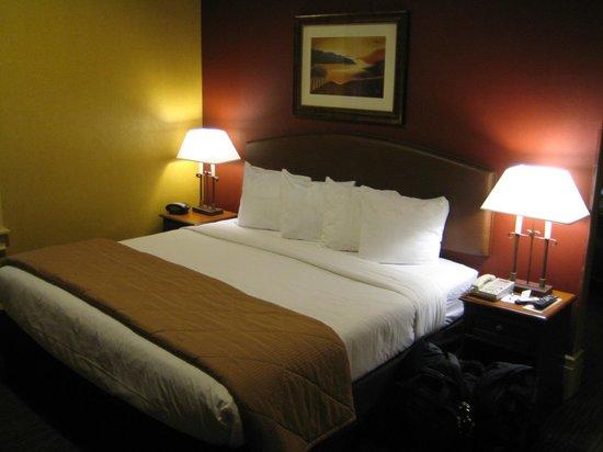 Quality Inn & Suites Boulder Creek: King suite - king bed.